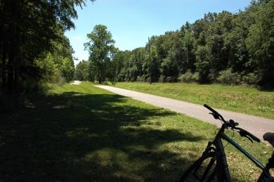 Sawmill Branch Trail